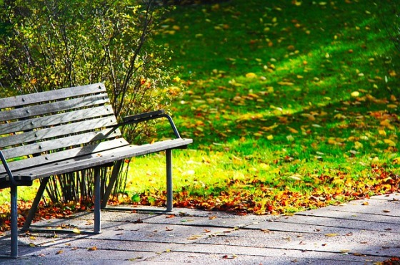 wood-bench-241005_640
