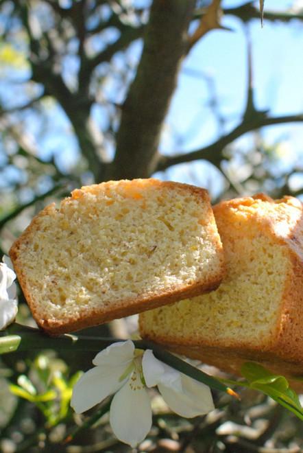 torta mandorle e fiori arancio blog