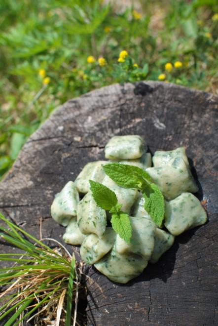 gnocchi ortiche primavera