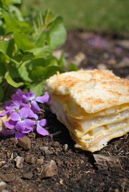 lasagna pera e formaggio di capra