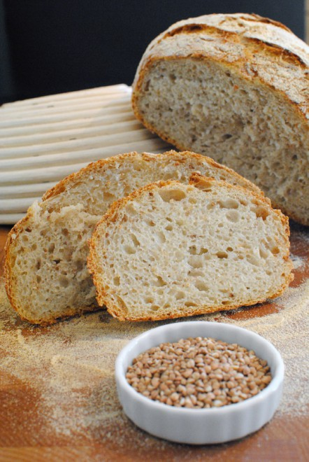 pane grano saraceno chicchi 1