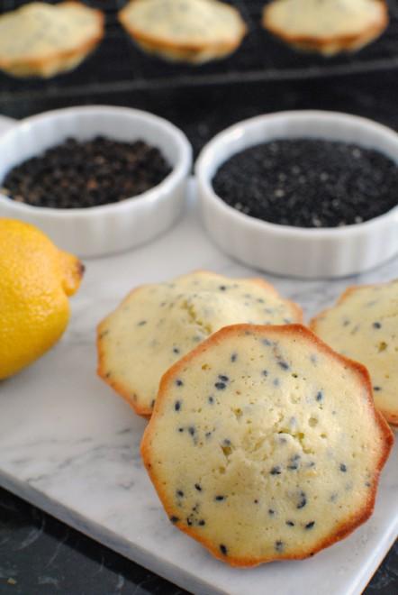 madeleines sesamo nero limone e pepe, black sesame seeds lemon and pepper madeleines 2